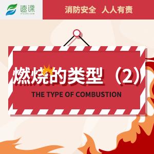 燃烧的类型(2)
